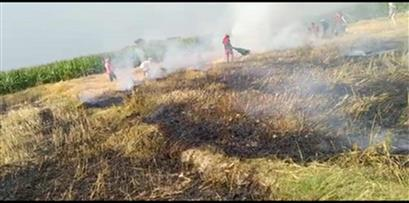 Burnt crops
